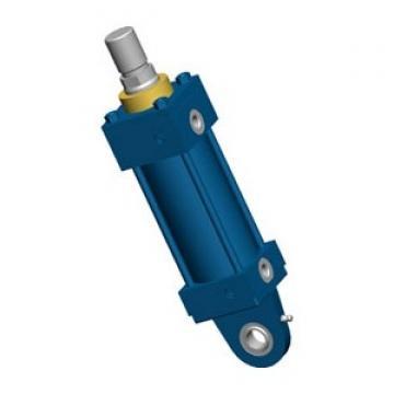 Rexroth R402000327 Pneumatique Vérin de Guidage Cylindre GPC-DA-010-0075-BV-BB
