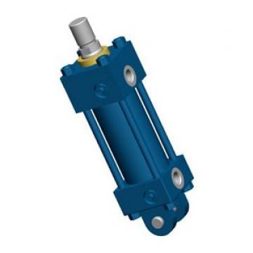 Rexroth 0822061000 Ø 16mm 10bar Cylindre Standard Vérin Pneumatique de Guidage