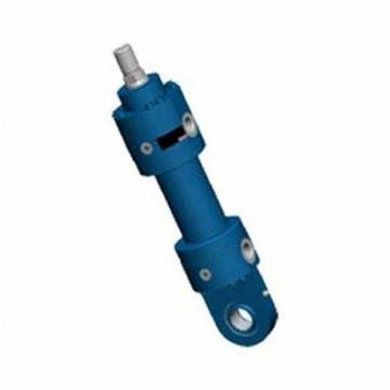 Rexroth 0822063001 Vérin Pneumatique