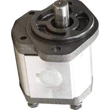 Pompe Hydraulique à Engrenage Pompe à Engrenages 25ccm Boîte de Vitesse 53L/min
