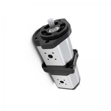 Kracht Md 90-100 Pompe à Engrenage Hydraulique 20 CM ³/ U de Puisard fmvz2