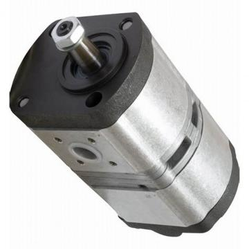 Pompe hydraulique BOSCH/REXROTH 16+14cm³ CASE IH c55 c64 c70 cs94 DEUTZ 90 110 120