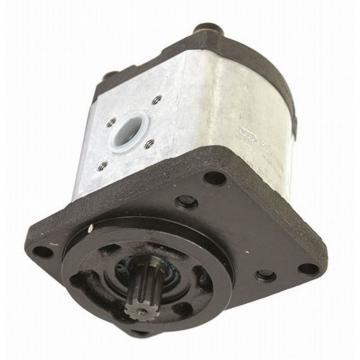 Double Pompe Hydraulique Bosch 0510665381 pour Case IH / Ihc C 55 64 70,Cs 78 86