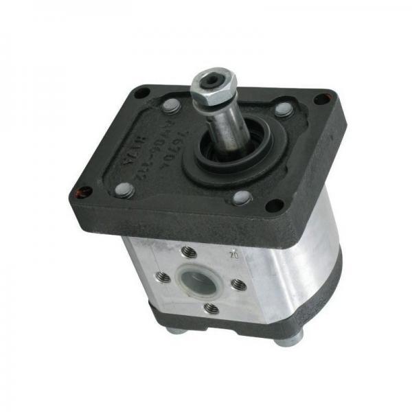 Neuf LAMBORGHINI Mlsd / GP.205 Hydraulique Gear Pompe / GA208C2 MLSDGP205 #1 image