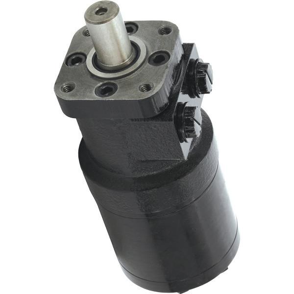 Hydraulique Groupe 2 Gear Moteur, Réversible (Avec Externe Vidange), 4CC #1 image