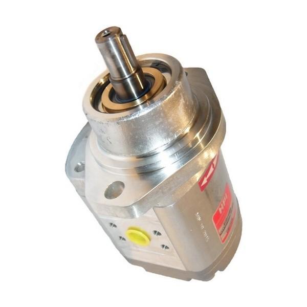 Loncin Moteur Diesel Pompe Hydraulique Set #1 image