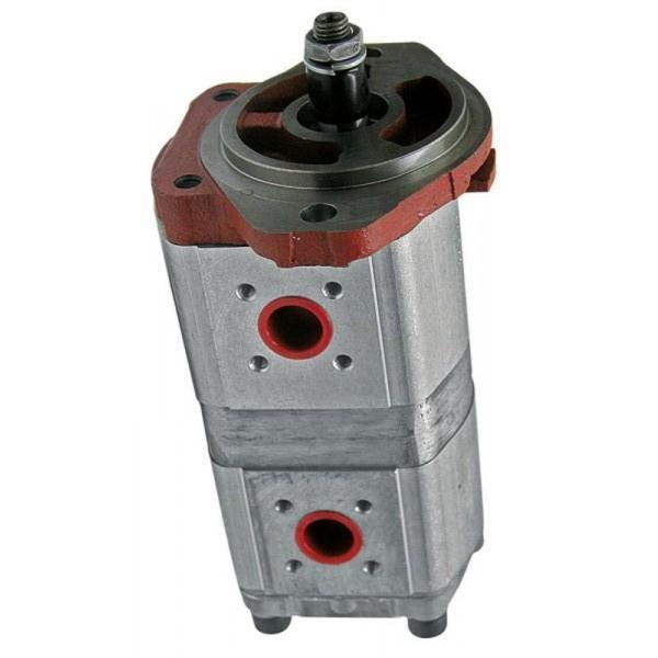Pompe hydraulique, système de direction 500060052 pour Fiat Ducato II VAN 244 2.3 JTD, D #3 image