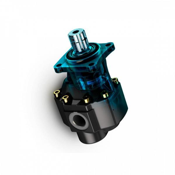 Industrial Technic Hydraulique Pompe à Engrenage Hydraulique Gear Pompe A72X #1 image