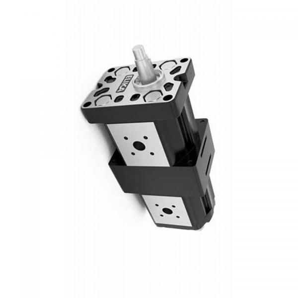 Industrial Technic Hydraulique Pompe à Engrenage Hydraulique Gear Pompe A72X #2 image