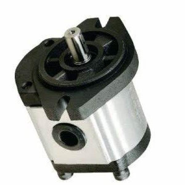 éléctrique Pompe hydraulique Pompe à engrenages externes Moteur électrique pour  #1 image