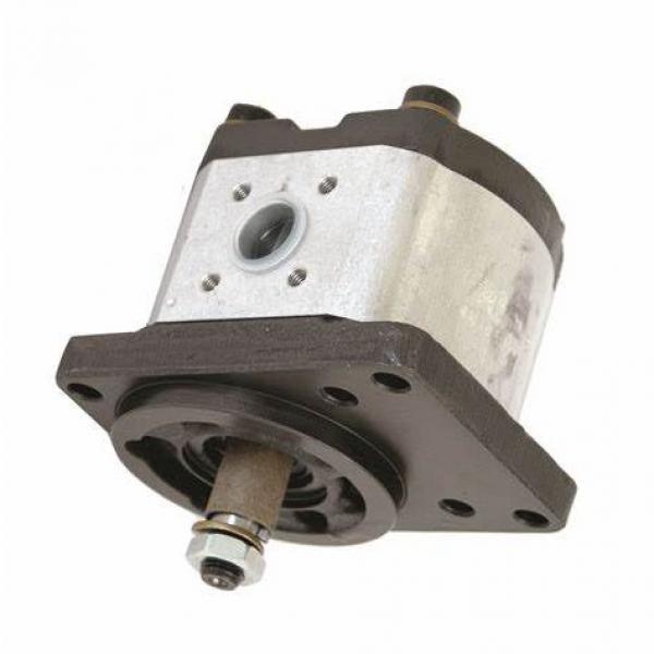 Pompe Hydraulique A10VSO 18 DFR1/31R Rexroth Arburg Bosch Axialkolbenpumpe #2 image