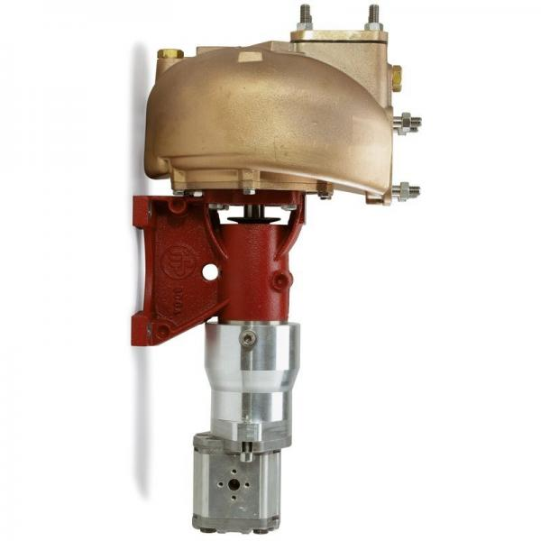 HAWE LP125-20 Air Driven Hydraulic Pump, Pneumatically Operated Hydraulic Pump #1 image