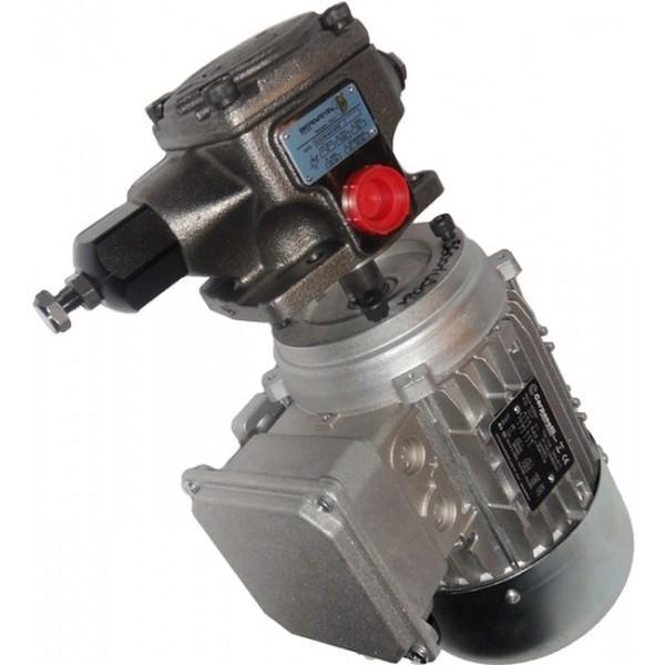 HAWE LP125-20 Air Driven Hydraulic Pump, Pneumatically Operated Hydraulic Pump #3 image