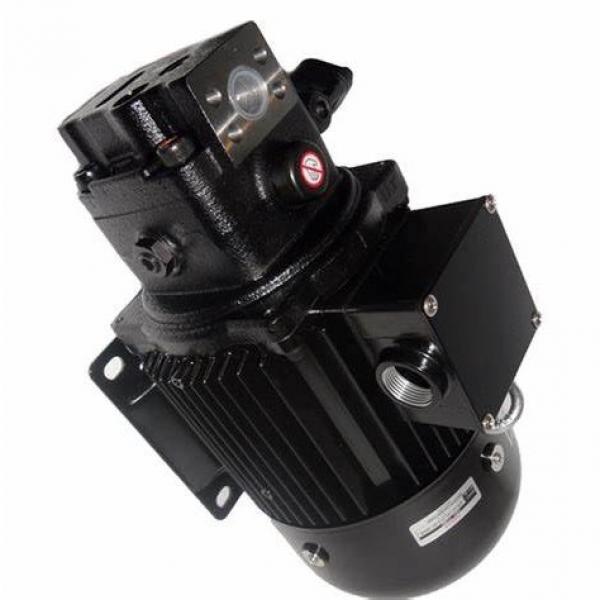 30 Ton Hydraulic Pump Hydraulic Ram Cylinder Pressure Gauge Workshop Shop Press #2 image